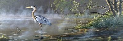 Quiet Cove - Great Blue Heron-Wilhelm Goebel-Stretched Canvas Print