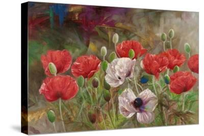 Poppies III-li bo-Stretched Canvas Print