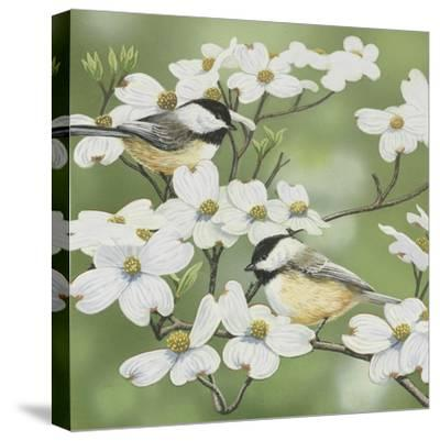 Springtime and Chickadees-William Vanderdasson-Stretched Canvas Print