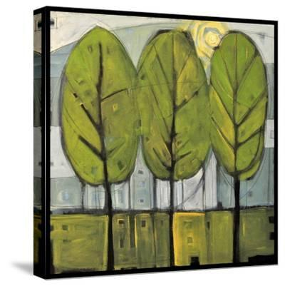 Summer Trees-Tim Nyberg-Stretched Canvas Print