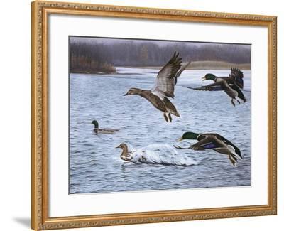 Spring Arrivals-Rusty Frentner-Framed Giclee Print