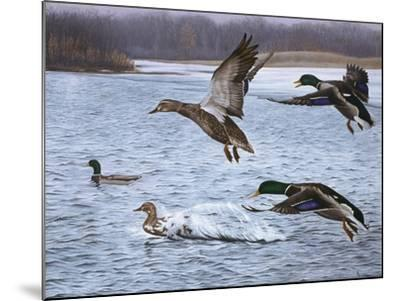 Spring Arrivals-Rusty Frentner-Mounted Giclee Print