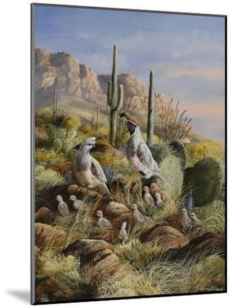 Spring Bounty-Trevor V. Swanson-Mounted Giclee Print