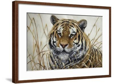 Tiger-Jeff Tift-Framed Giclee Print