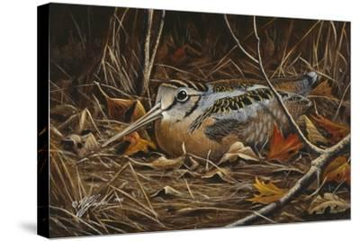 Woodcock in Hiding-Wilhelm Goebel-Stretched Canvas Print