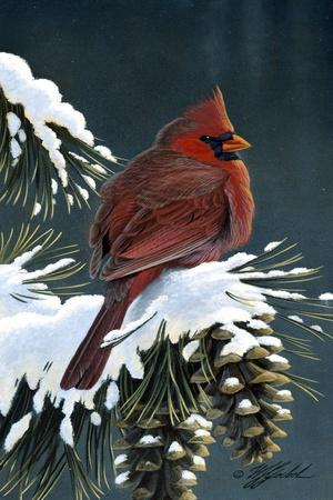 Winter Cardinal-Wilhelm Goebel-Stretched Canvas Print