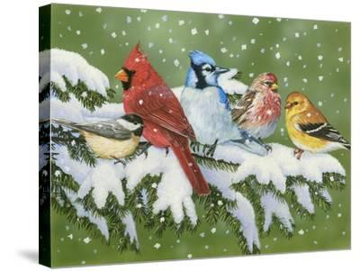 Winter Friends-William Vanderdasson-Stretched Canvas Print