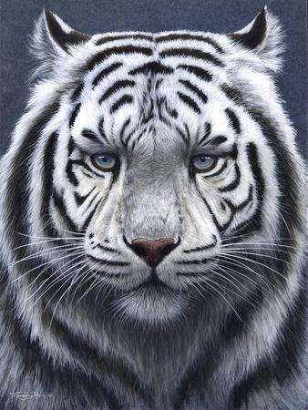 White Tiger Ghost-Jeremy Paul-Framed Giclee Print