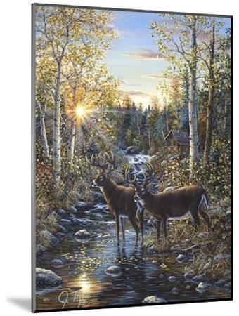Whitetail Deer-Jeff Tift-Mounted Giclee Print