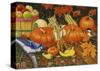 Autumn Bounty-William Vanderdasson-Stretched Canvas Print