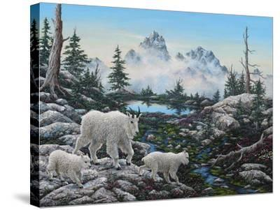 Alpine Country-Jeff Tift-Stretched Canvas Print