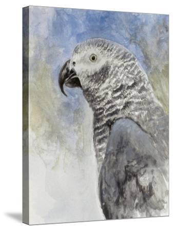 Bird - Head Study-Rusty Frentner-Stretched Canvas Print