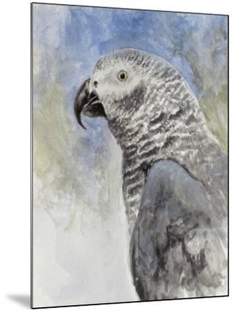 Bird - Head Study-Rusty Frentner-Mounted Giclee Print