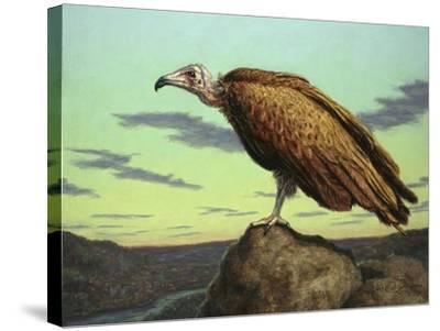 Buzzard Rock-James W. Johnson-Stretched Canvas Print