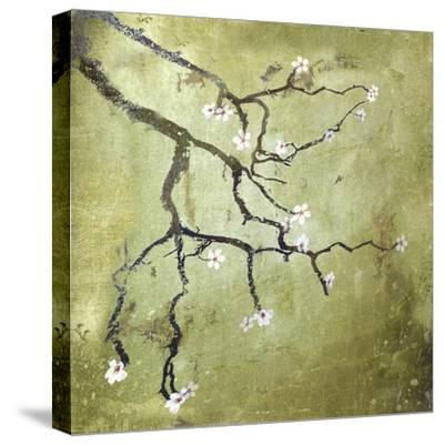 Cherry Tree II-Karen Williams-Stretched Canvas Print