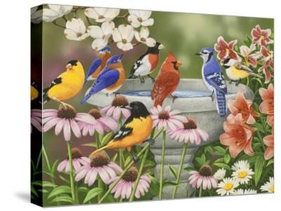 Garden Birdbath-William Vanderdasson-Stretched Canvas Print