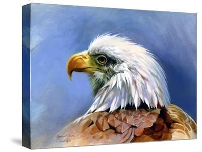 Eagle Portrait-Spencer Williams-Stretched Canvas Print