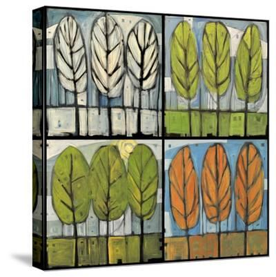 Four Seasons Tree Series Square-Tim Nyberg-Stretched Canvas Print