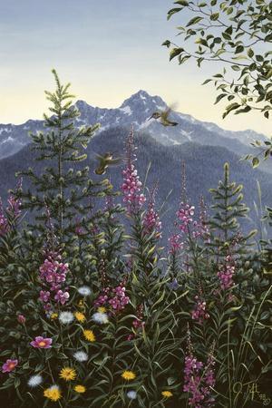 Hummingbirds-Jeff Tift-Framed Giclee Print
