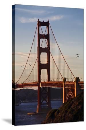 San_Francisco_D260-Craig Lovell-Stretched Canvas Print