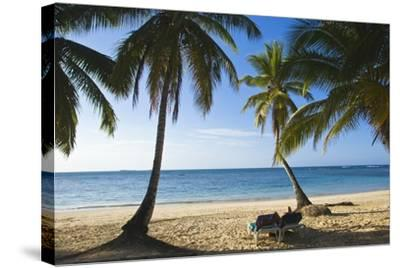Palm Trees on Beach, Las Terrenas, Samana Peninsula, Dominican Republic-Massimo Borchi-Stretched Canvas Print