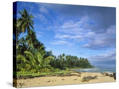 Beach in Limon, Costa Rica-Guido Cozzi-Stretched Canvas Print