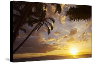 Sunset with Palm Trees in Kihei, Maui, Hawaii-Ron Dahlquist-Stretched Canvas Print