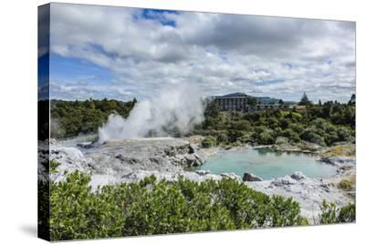 Geysirfield in the Te Puia Maori Cultural Center, Rotorura, North Island, New Zealand, Pacific-Michael Runkel-Stretched Canvas Print