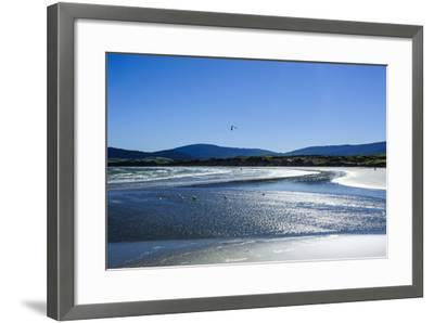 Te Waewae Bay, Along the Road from Invercargill to Te Anau, South Island, New Zealand, Pacific-Michael Runkel-Framed Photographic Print
