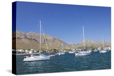 View over the Marina to Port De Pollenca, Pollenca, Majorca (Mallorca)-Markus Lange-Stretched Canvas Print