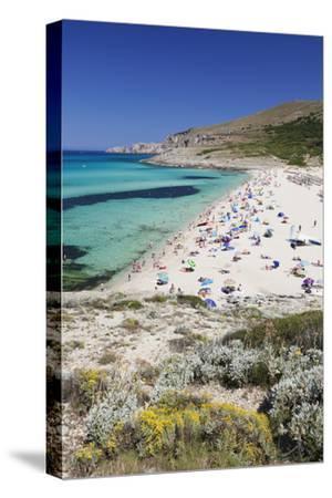 Beach and Bay of Cala Mesquita, Capdepera, Majorca (Mallorca)-Markus Lange-Stretched Canvas Print