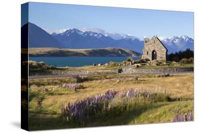 Church of the Good Shepherd, Lake Tekapo, Canterbury Region, South Island, New Zealand, Pacific-Stuart Black-Stretched Canvas Print