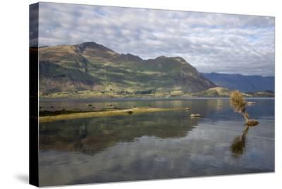 Reflection in Lake Wanaka, Wanaka, Otago, South Island, New Zealand, Pacific-Stuart Black-Stretched Canvas Print