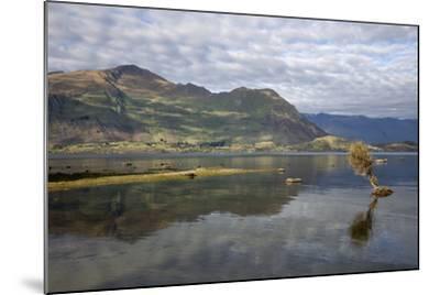 Reflection in Lake Wanaka, Wanaka, Otago, South Island, New Zealand, Pacific-Stuart Black-Mounted Photographic Print