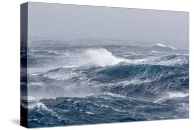 Gale Force Westerly Winds Build Large Waves in the Drake Passage, Antarctica, Polar Regions-Michael Nolan-Stretched Canvas Print
