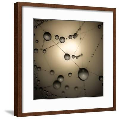 Catching The Sun-Ruud Peters-Framed Photographic Print