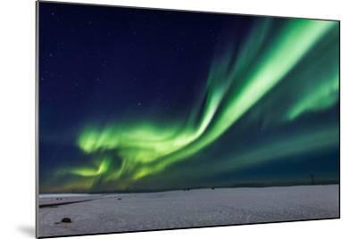 Aurora Borealis or Northern Lights, Iceland, Power Lines by the Jokulsarlon--Mounted Photographic Print