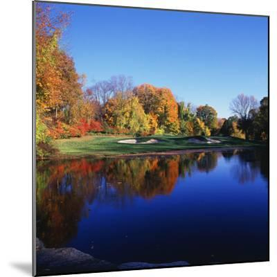 Trees in a Golf Course, Patterson Club, Fairfield, Connecticut, USA  Photographic Print by | Art com