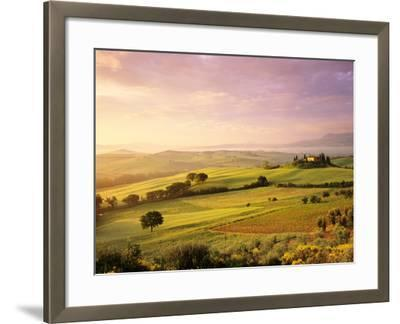 Trees in a Field at Sunrise, Villa Belvedere, Val D'Orcia, Siena Province, Tuscany, Italy--Framed Photographic Print