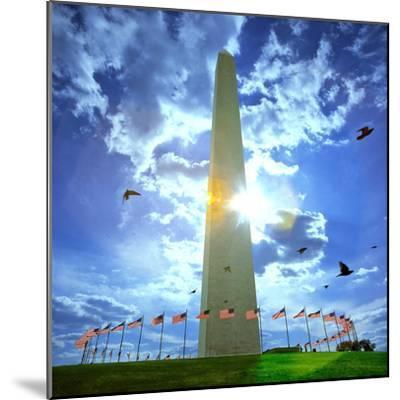 Low Angle View of the Washington Monument, the Mall, Washington Dc, USA--Mounted Photographic Print