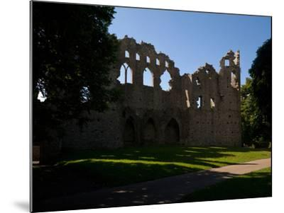 The Jealous Wall Folly, County Westmeath, Ireland--Mounted Photographic Print