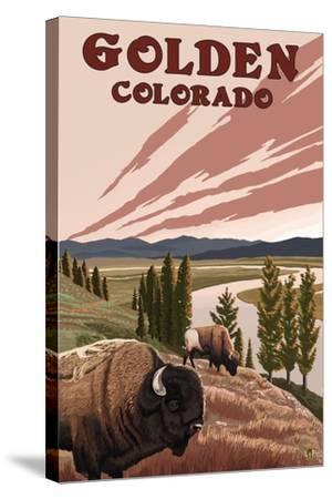 Golden, Colorado - Bison and River-Lantern Press-Stretched Canvas Print