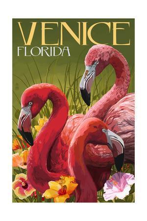 Venice, Florida - Flamingos-Lantern Press-Framed Art Print
