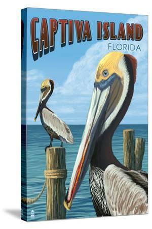 Captiva Island, Florida - Brown Pelican-Lantern Press-Stretched Canvas Print