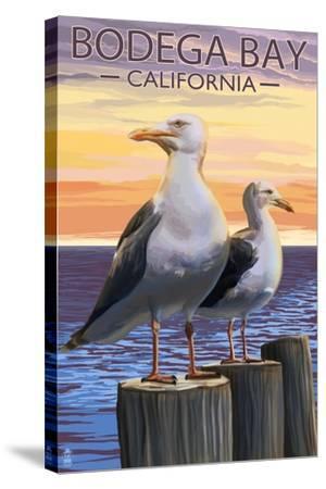 Bodega Bay, California - Seagull-Lantern Press-Stretched Canvas Print