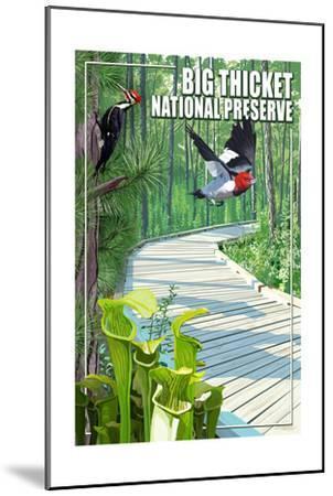Big Thicket National Preserve, Texas-Lantern Press-Mounted Art Print