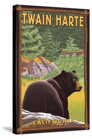 Twain Harte, California - Black Bear in Forest-Lantern Press-Stretched Canvas Print