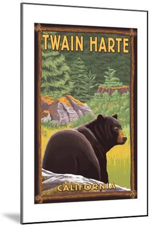 Twain Harte, California - Black Bear in Forest-Lantern Press-Mounted Art Print