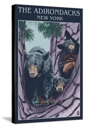 The Adirondacks, New York State - Bear Family in Tree-Lantern Press-Stretched Canvas Print