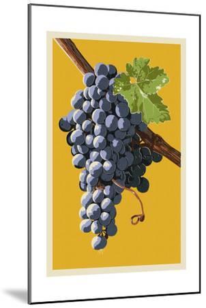 Wine Grapes-Lantern Press-Mounted Art Print